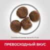 Hill's Science Plan сухой корм для щенков средних пород для поддержания сильного иммунитета, с ягненком и рисом (0,8 кг 2,5 кг 12 кг 18 кг).