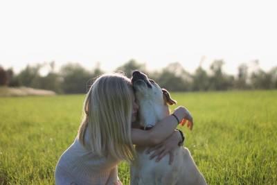 Кормление собаки. 5 источников здоровья.
