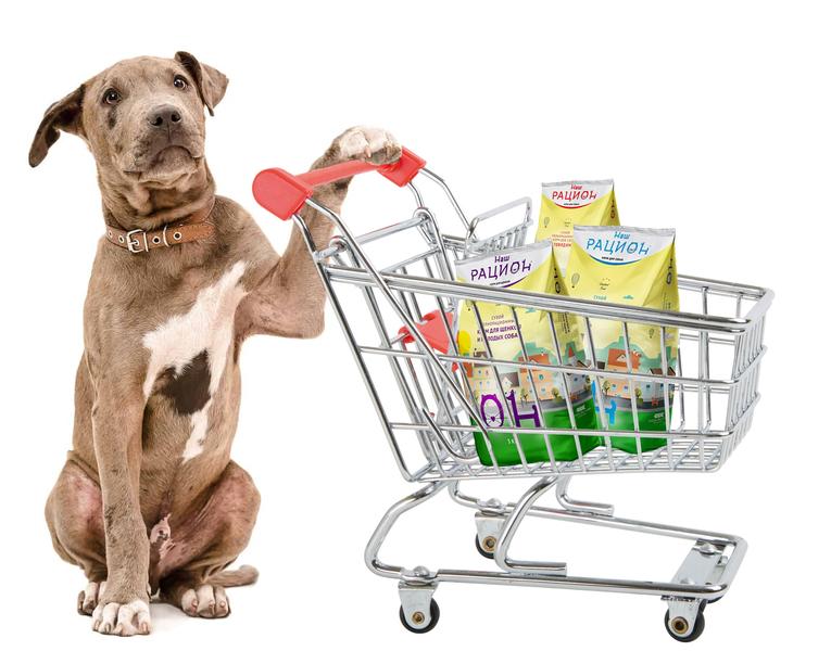Питание собак. Корма для собак.