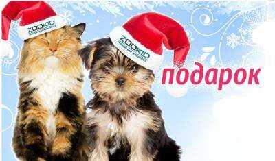 В Новый год с ZooKid.ru