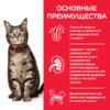Влажный корм Hill's Science Plan для взрослых кошек для поддержания жизненной энергии и иммунитета, пауч с океанической рыбой в соусе, 85 г