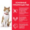 Влажный корм Hill's Science Plan для молодых стерилизованных кошек и кастрированных котов, пауч с форелью в соусе, 85 г