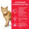 Сухой корм Hill's Science Plan Youthful Vitality для пожилых кошек (7+) для поддержания активности и жизненной энергии, с курицей, 0,3 кг 1,5 кг