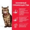 Сухой корм Hill's Science Plan Sensitive Stomach & Skin для кошек с чувствительным пищеварением и кожей, с курицей (0,3 кг, 1,5 кг 7 кг).