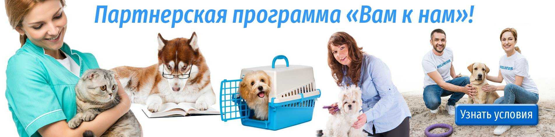 Вам+к+намjpc_optimized