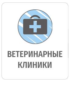 230Х285ВЕТ+КЛИНИКА_1 (1)